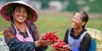 中国脱贫攻坚主战场贵州扶贫成效显著 - 贵州新闻