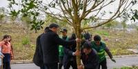 我校开展植树节活动 - 贵阳中医学院